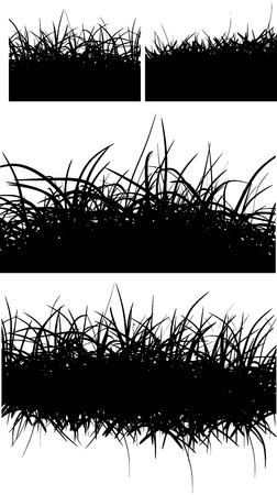 coiffure: horizontal black hair fur grass lines over white Illustration