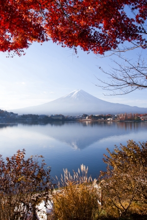 Mt Fuji smiles in autumn Japan  photo