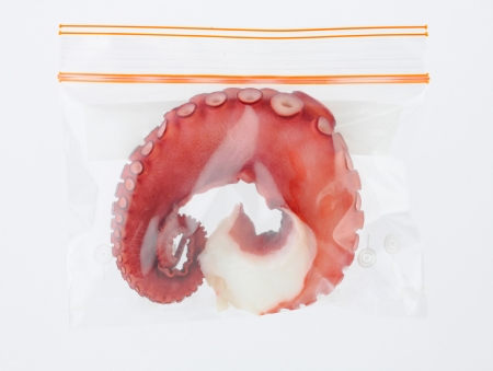 keep your octopus longer life and fresh in a good zip bag isolated 