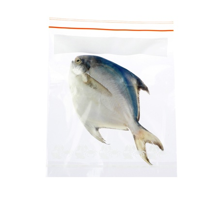 keep your seafood always fresh in the zipper plastic bag Stock Photo - 16654179