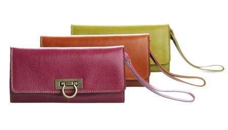 Красочные леди кожаный бумажник сумки красивые и изолированные на белом Фото со стока
