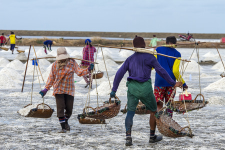 Workers collect salt in salt farm at Petchaburi seaside farm, Thailand photo