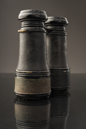 ippica: Binocolo antichi seduto sulla sua testa e si riflette su una superficie scura. Archivio Fotografico