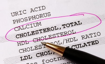 Focus on the cholesterol in a blood test report concept of better health Stock Photo - 10129729