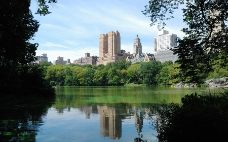 View from Central Park in New York City photo