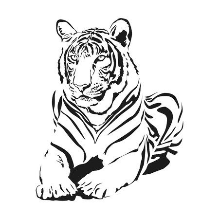 big cat: big wild cat Illustration