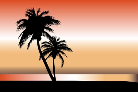 high sea: Palm Sunset