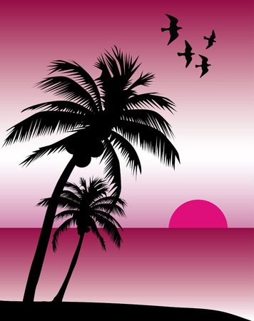 pink hills: Pink Tropical Sunset Stock Photo