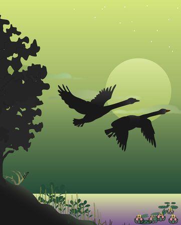 takeoff: Decollo Dello Swan