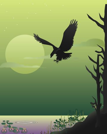 moon fish: American fish eagle