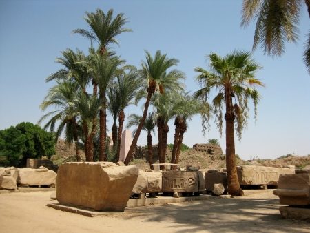 ruins and palm trees in Egypt Stock Photo