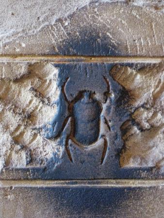 Scarab beetle inscription on Egytian ruins