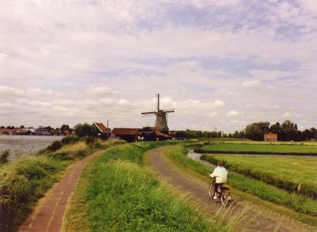 A bicyclist on a path with a windmill in the background