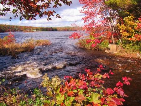 Lake Thomas in Autumn, Nova Scotia, Canada Banco de Imagens