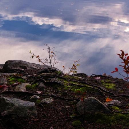 Lake side reflection appears as sky 版權商用圖片 - 15883637