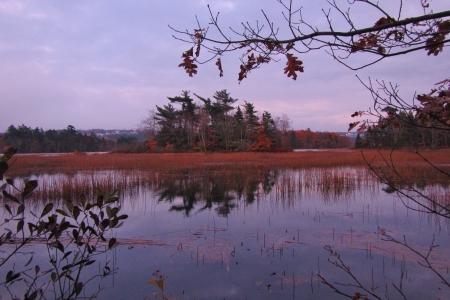 Pine Island, Lake Banook Nova Scotia  Stock Photo