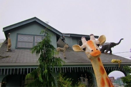 Giraffe looking into camera and animals on a roof behind him. Stock Photo