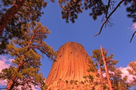 strong base: Tower National Monument Wyoming visto una forte composizione verticle interessante incorniciato tra gli alberi trovati a s di base Archivio Fotografico
