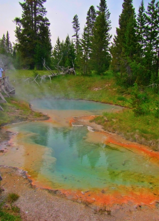 Beautiful mineral hot spring pool at yellowstone National Park