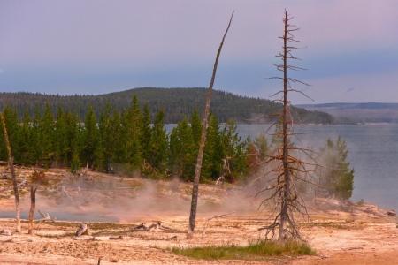 Yellowstone hotsprings pool steam,