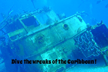 Graphic design poster with text created from my underwater photography  photo