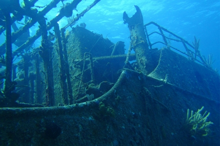 hard coral: Looking up at ship wreck I was diving on
