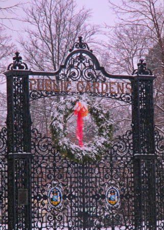 Gat to halifax Public gardens with Christmas wreath  photo