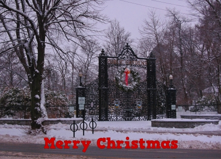 Halifax Christmas card i created from a photograph of Halifax Public Gardens in winter photo