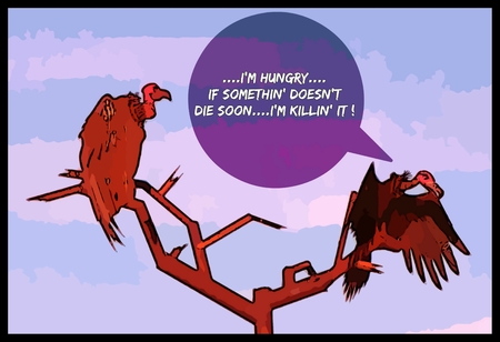 impatience: Graphic comic of starving vultures tired of waiting for something to die