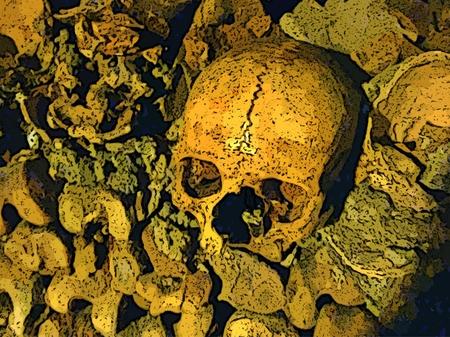 Human skull among bones