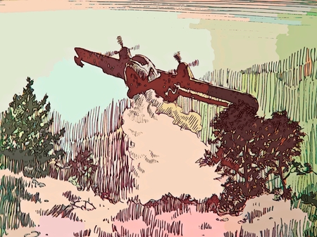 environmental concern: Graphic design of aircraft fighting forest fire