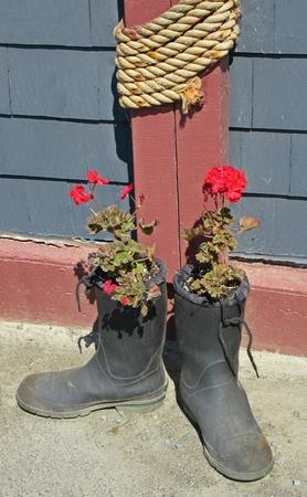 bodegones: Naturaleza muerta con flores plantado en botas de goma