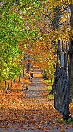 open gate: Open gate to Halifax Public Garden in the Fall.