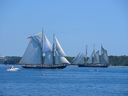 Two beautiful sailing ships coming and going in Halifax Nova Scotia harbor summer 2017.