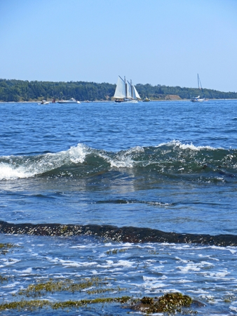 Photograph of sailing ship in Halifax with waves in the foreground. Editorial