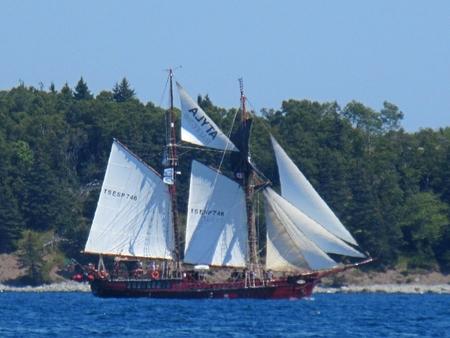 Beautiful tall ship under full sail.