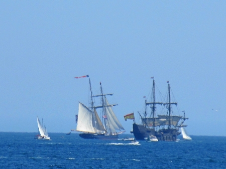 Tall ships in Halifax Harbor on the horizon. Editorial
