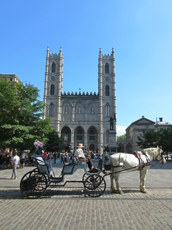 Notre Dame Cathedral with hansom cab in Old Montreal.