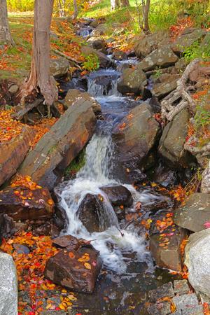 Beautiful stream in Halifax Nova Scotia in the fall. Banco de Imagens