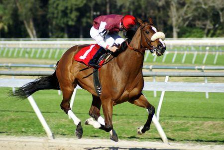 A jockey riding a thoroughbred race horse through the final stretch. Banco de Imagens - 7273010
