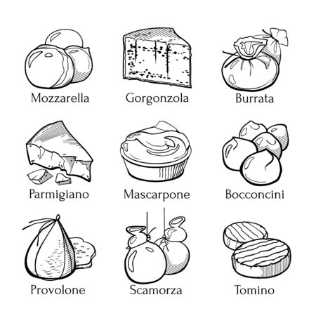 Collection of traditional Italian cheese. Hand drawn sketch in doodle style. Vector Illustration