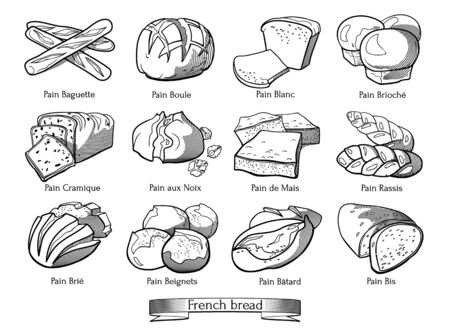 Collection of traditional French types of bread. Hand drawn sketch in doodle style.