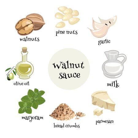 Italian Walnut sauce ingredients. Cartoon vector illustration