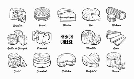 Collection of traditional French cheese. Hand drawn sketch in doodle style. Vecteurs