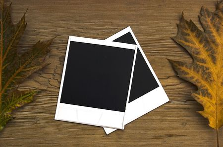 Blan polaroid frames over autumn background Stock Photo - 3696496