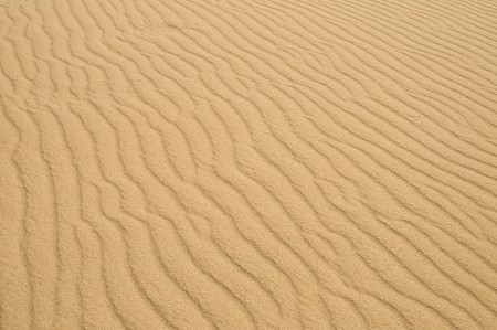 Sandy surface on desert. High detailed texture. Stock Photo