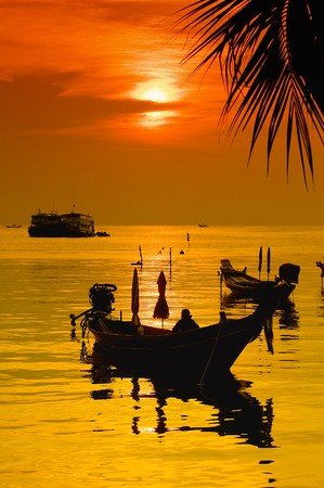 Sunset with palm and longtail boats on tropical beach. Ko Tao island, Thailand
