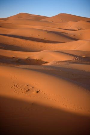 erg chebbi: Sand dunes in the Sahara Desert, Erg Chebbi, Merzouga, Morocco