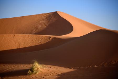 desert sand: Sand dunes in the Sahara Desert, Erg Chebbi, Merzouga, Morocco