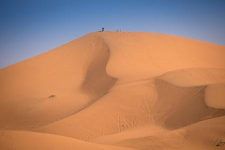 merzouga: Motorbike rider on the top of the dune, Merzouga, Morocco